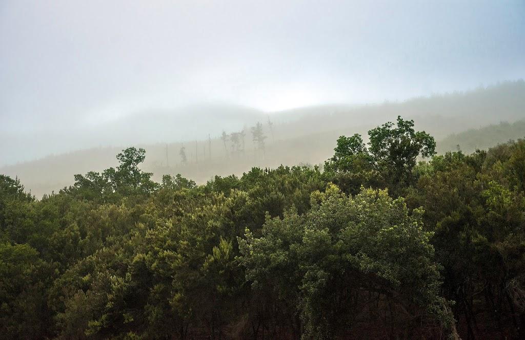 Veiled mountain